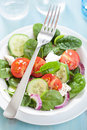 Salad with tomatoes cucumber and goat cheese healthy Royalty Free Stock Images