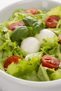 Salad with tomatoes and mozzarella 2 Royalty Free Stock Images