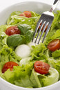 Salad with tomatoes and mozzarella with fork Royalty Free Stock Image