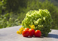 Salad and tomatos photo of with Royalty Free Stock Image