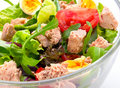 Salad with tuna fish Royalty Free Stock Photo
