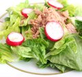Salad with tuna fish a fresh and radish Stock Images