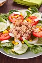Salad tuna tomato corn and onion Stock Images