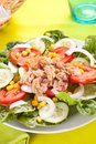 Salad tuna tomato corn and onion Royalty Free Stock Image