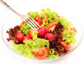 Salad from vegetables Stock Photography