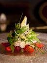 Salade de thons Images stock