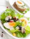 Salade met ansjovis Royalty-vrije Stock Foto's