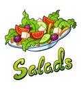 Salads lettering and illustration