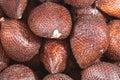 Salak Fruits Series 04 Royalty Free Stock Photo