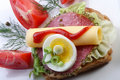 Salami sandwich on whole wheat bread Royalty Free Stock Images