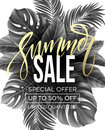 Sale banner handwriting lettering poster. Floral jungle summer background with tropical palm leaves. Vector illustration