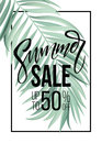 Sale banner, poster with palm leaves, jungle leaf and handwriting lettering. Floral tropical summer background. Vector