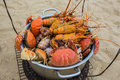 Sale of cooked seafood on the beach in nha trang vietnam Stock Image