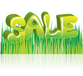 Sale green d word illustration for design Stock Photo