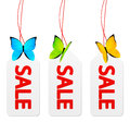 Sale paper tags with butterflies on white background Royalty Free Stock Images