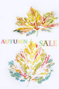 Sale sign on autumn leaves background Royalty Free Stock Photo
