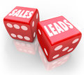 Sales leads words red dice gambling new business customers on two to illustrate taking a chance and rolling to win and prospects Royalty Free Stock Images