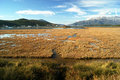 Saline in tivat natural reserve of montenegro Royalty Free Stock Image