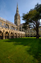 Salisbury Cathedral Royalty Free Stock Photo