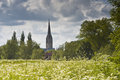 Salisbury cathedral across the water meadows Royalty Free Stock Images