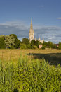 Salisbury cathedral across the water meadows Royalty Free Stock Image