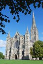 Salisbury cathedral a summer view of wiltshire england Stock Images