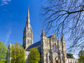 Salisbury cathedral wiltshire england uk early english gothic style with the talest spire in the country europe Stock Photography