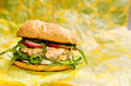 Salmon burger Royalty Free Stock Photo