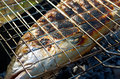Salmon cooking on a grill close up atlantic Stock Photo