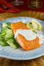 Salmon with dill sauce Stock Images