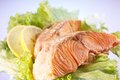 Salmon filet with lemon Stock Photography