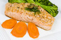 Salmon Fillet with Caper and Dill Sauce Stock Image