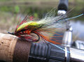 Salmon fly Royalty Free Stock Photo