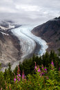 Salmon glacier at hyder alaska Stock Photos