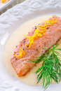 Salmon grilled with dill a fresh Royalty Free Stock Photo