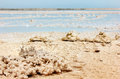 Salt deposits of the dead sea israel coast typical landscape Stock Photography