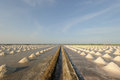 Salt farm salt pan in thailand landscape Stock Images