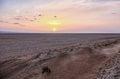 Salt lake Chott el Djerid in desert in Tunisia Royalty Free Stock Photo