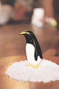 Salt and pepper shaker penguin quirky vintage atop a bed of rock Royalty Free Stock Images