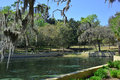 Salt Springs Ocala National Forest, Florida Royalty Free Stock Photo