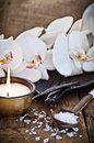 Salt and Vanilla Royalty Free Stock Photo