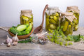 Salted cucumbers. Spices and herbs for making pickles on wooden background Royalty Free Stock Photo