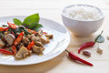 Salted pork with chili & Basil leaves and rice in plate Royalty Free Stock Photo