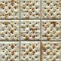 Saltine cracker closeup Stock Images