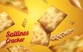 Saltines cracker element