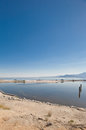 Salton Sea Royalty Free Stock Image