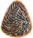 Saltwater mussel in wicker tray iii a group of a over white background Stock Photo