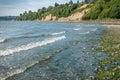 Saltwater Shoreline