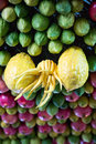 Samaritan sukkot fruits on a ceiling at the festive celebration of the community Royalty Free Stock Photos