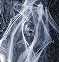 Samhain Stock Images